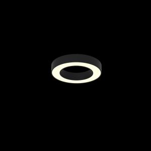 Immax NEO CÉČKO Smart stropní svítidlo 60cm 52W černé Zigbee 3.0