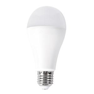 LED žárovky Rabalux - SMD-LED 1459