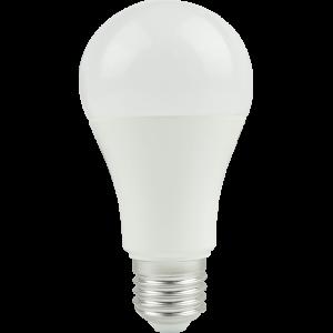 Led žárovka E27 13,8W B60 NW